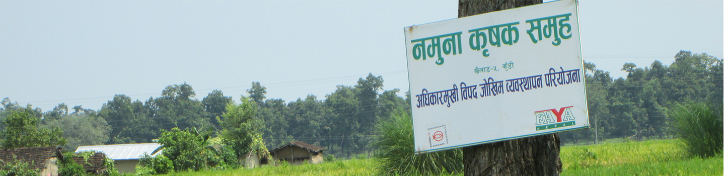 Forum for Awareness and Youth Activity (FAYA), Nepal